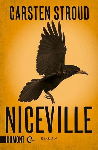Stroud Niceville 1 Cover eBook 2012